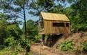 Nhà gỗ tiện nghi ở ngoại thành Hà Nội gây choáng báo Tây