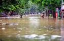 Bão số 11 giật cấp 15, gây mưa lớn khi vào Vịnh Bắc Bộ