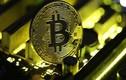 Tăng hơn 1.000 USD/ngày, Bitcoin cán ngưỡng 9.000 USD