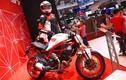 Ducati Monster 797 giá 388 triệu tại Việt Nam có gì?
