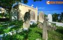 Viếng thăm nghĩa địa có một không hai ở Đà Nẵng