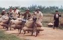 Miền Bắc Việt Nam thời chiến qua ống kính Ishikawa Bunyo (3)