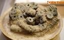 Ngắm kho tiền khủng của đại gia Việt 2.000 năm trước