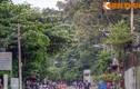 """""""Khu rừng"""" tuyệt đẹp trong ngôi chùa ở Sài Gòn"""