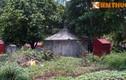 Bí ẩn mỹ nhân trong mộ đá cổ nổi tiếng Linh Đàm