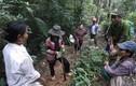 """Quảng Bình: Giám đốc rừng phòng hộ """"mất tích"""" bí ẩn"""