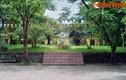 Lạ lùng đàn tế cổ xưa nằm giữa sân trường ở Huế
