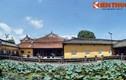 Ngắm cung điện cực đẹp của các Hoàng thái hậu nhà Nguyễn