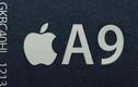 Apple phải tiếp tục chạy theo Samsung