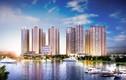 TNR Holdings Việt Nam lọt Top 10 nhà phát triển bất động sản hàng đầu VN