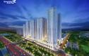 Chung cư nào đang làm nóng thị trường BĐS Đông Bắc Hà Nội?