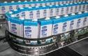 Vinamilk tiếp tục dẫn đầu thị trường sữa tươi VN