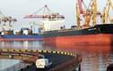 Canada chuyển cho Ukraine 42 container trang thiết bị quân sự