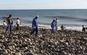 Tìm thấy mảnh vỡ thứ hai nghi của MH370 trên đảo Reunion