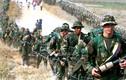 Chùm ảnh về cuộc nổi dậy của FARC ở Colombia
