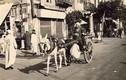 Chùm ảnh cuộc sống ở Ai Cập sau Thế chiến II
