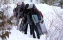 Dân di cư ồ ạt vượt biên sang Canada
