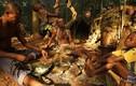 Ảnh: Bộ tộc người lùn Baka sống trong rừng rậm châu Phi