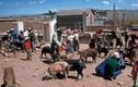 Trở lại với đất nước Guatemala hồi thập niên 1970