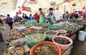 Ghé thăm chợ hải sản nổi tiếng ở Thanh Đảo