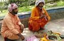 Rợn người xem rắn độc biểu diễn giữa phố Ấn Độ
