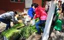 Ngỡ ngàng các chợ cóc ở Trung Quốc