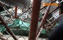 Sập giàn giáo đường sắt trên cao, đè bẹp taxi ở Hà Nội