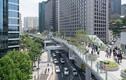 Ngỡ ngàng vườn đẹp như cổ tích trên cầu vượt ở Seoul