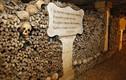 2 đứa trẻ bị lạc 3 ngày trong mê cung hầm mộ ở Paris
