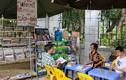 Quầy sách báo miễn phí của cụ bà Hà Nội