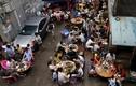 Lễ hội thịt chó ở Trung Quốc đông nghịt người bất chấp tranh cãi