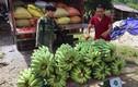 """Bỏ nghề """"oách xà lách"""" vào núi trồng 5ha chuối Thái Lan"""