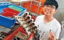 Chàng sinh viên kiếm được 148 triệu/tháng nhờ nuôi gián