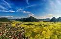 Thung lũng Bắc Sơn đẹp ngỡ ngàng mùa lúa chín
