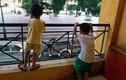 Đi khám phát hiện con trai 4 tuổi có ấu trùng trong máu