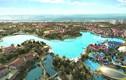 """""""Vua nghỉ dưỡng"""" Macau đầu tư casino tại Việt Nam và Nhật Bản"""