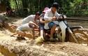 """Trải nghiệm đường đến trường """"đi bộ nhanh hơn xe máy"""" ở Thanh Hóa"""