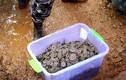 Bí ẩn hơn 5 tấn tiền xu cổ được chôn dưới ngôi làng Trung Quốc