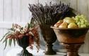 Bài trí hoa oải hương đúng phong thủy để gia đình hạnh phúc viên mãn
