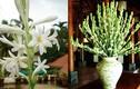 Cúng hoa trên bàn thờ dù là ai cũng nhất định phải biết điều này