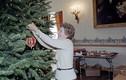 Những Giáng sinh đầu tiên ở Nhà Trắng: Từ thời Kennedy tới Trump