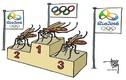 Nguyên tắc phòng Zika khi đến Brazil vào mùa Oplympic