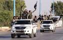 Vì sao phiến quân IS ưa dùng ô tô bán tải Toyota?