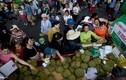 Tranh mua mua sầu riêng, vải ở chợ trái cây Sài Gòn