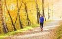 Đây là lý do tuyệt vời để chạy bộ vào mùa thu