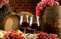Rượu vang đỏ : Phòng chống hay gia tăng nguy cơ ung thư?
