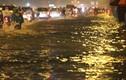 TP HCM mưa lớn kéo dài... đường phố thành sông, cây đổ rạp