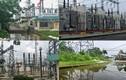 Trạm biến áp quan trọng nhất Sài Gòn bị đe doạ vì…ngập