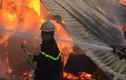 TPHCM: Cháy dữ dội ở xí nghiệp gỗ, lan rộng xung quanh
