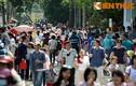 Mùng 3 Tết: Khu vui chơi, giải trí đông kín người du xuân